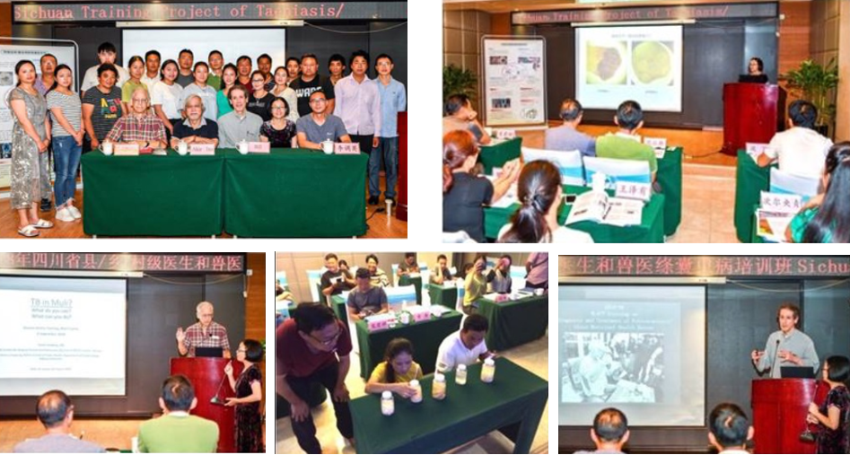 Photo montage of trainers and trainees during the project